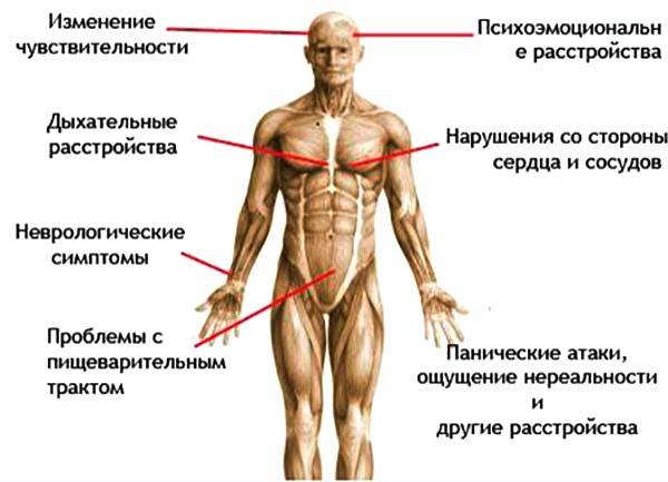 Лечение вегето-сосудистой дистонии (ВСД) - симптомы