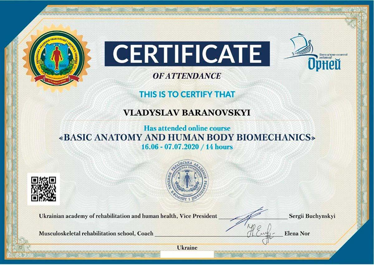 Травматолог-ортопед Владислав Барановский сертификат базовая анатомия